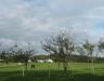 Ein Regenbogen ohne Regen?